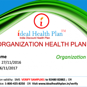 Organization Health Plan